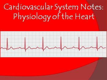 Cardiovascular System Notes-Heart Physiology Powerpoint Presentation