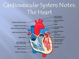 Cardiovascular System Notes - The Heart Powerpoint Presentation