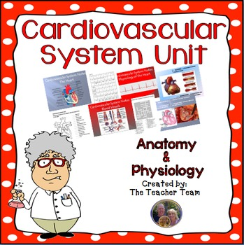 Cardiovascular System Circulatory System Unit for Anatomy and Physiology
