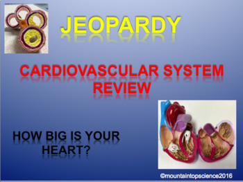 Cardiovascular Jeopardy Review
