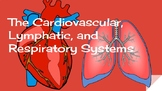 Anatomy: Cardiovascular, Lymphatic, and Respiratory System
