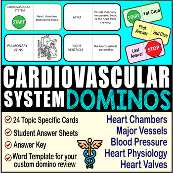 Cardiovascular System ~DOMINO REVIEW~ 24 Cards + Answer Sheets + Key- ANATOMY