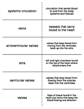 Cardiovascular System Flash Cards for Middle School Science