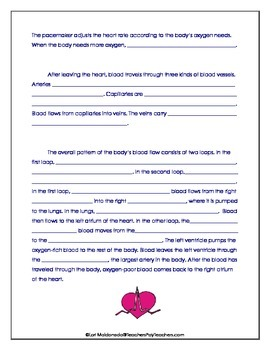 Cardiovascular System: Guided Reading Activity