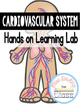 Cardiovascular/ Circulatory System Hands on Lab