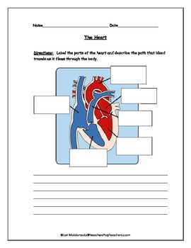 Cardiovascular system heart diagram to label by lori maldonado tpt cardiovascular system heart diagram to label ccuart Image collections