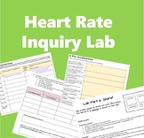 Cardiovascular System: Heart Rate Inquiry Lab (hits HS-LS1-3!)