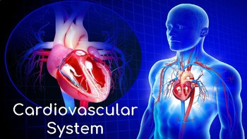 Cardiovascular System Lesson (with 2 Activities)