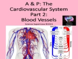 Cardiovascular System Part 2: Blood Vessels PPT w/Student