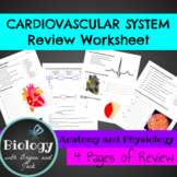 Cardiovascular System Review Worksheet