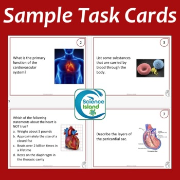 Cardiovascular System Task Cards with PowerPoint Review