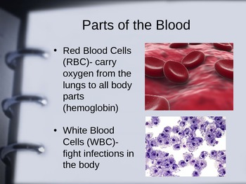 Cardiovascular System, The Blood and Heart Disease