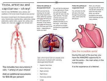 Cardiovascular Unit (grades 4-6)