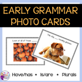 Syntax Cards for Speech Therapy: Have/Has, Is/Are, Plural Nouns