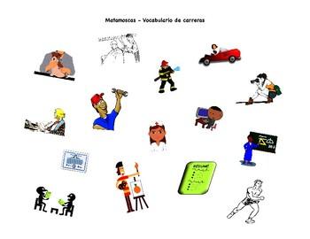 Career and Résumé Vocabulary Matamoscas Game