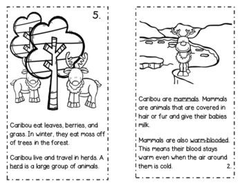 Caribou Informational Book Study