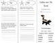 Carlos and the Skunk Trifold - California Treasures 5th Grade Unit 6 Week 2
