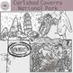 Carlsbad Caverns National Park Clip Art Set
