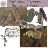 Carlsbad Caverns National Park Clip Art Set
