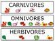 Carnivore Herbivore Omnivore Activity