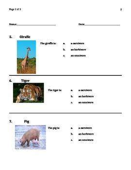 Carnivore, Herbivore, Omnivore - Alternate Proficiency Assessment NJ CPI 5.5.4