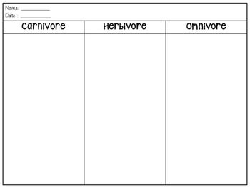 Carnivore, Herbivore, Omnivore Animal matching activity worksheet (animal diet)