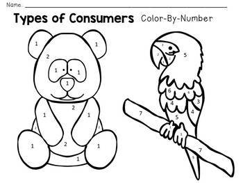 Carnivore Herbivore Omnivore - Types of Consumers - Color-By-Number