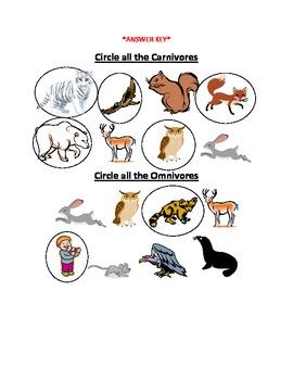 Carnivore, Herbivore, Omnivore Worksheet