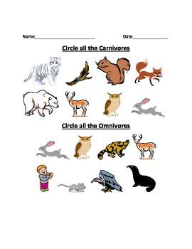 Carnivore, Herbivore, Omnivore Worksheet by Bryan | TpT