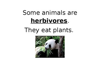 Carnivore, Herbivore, and Omnivore Sorting