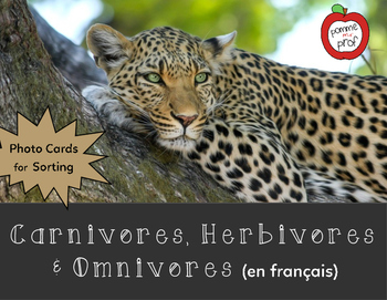 Carnivore, Herbivore and Omnivore Sorting Activity (French Science)