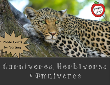 Carnivore, Herbivore and Omnivore Sorting Activity (Grade 4 Ontario Science)