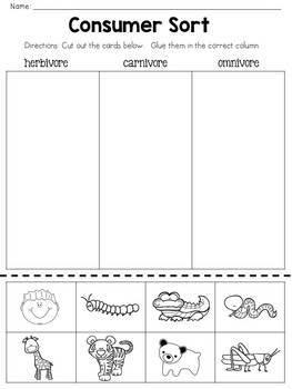 Carnivore Omnivore Herbivore - Types of Consumers - Mini-Unit