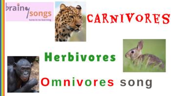 Carnivores, Herbivores & Omnivores | FREE Activity