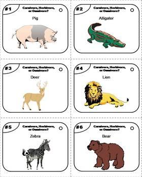 Carnivores, Herbivores, Omnivores Task Cards