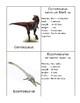 Carnivorous Dinosaur Definition Cards