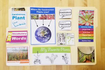 Carnivorous Plant Lapbook