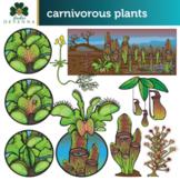 Carnivorous Plants Clip Art Set - Bog Plants