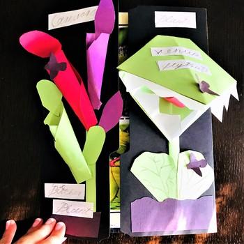 Carnivorous Plants Lap Book