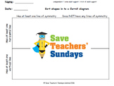 Carroll Diagram lines of symmetry lesson plans, worksheets and more