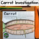 Carrot Investigation