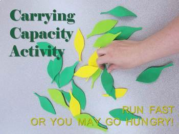 Carrying Capacity Activity