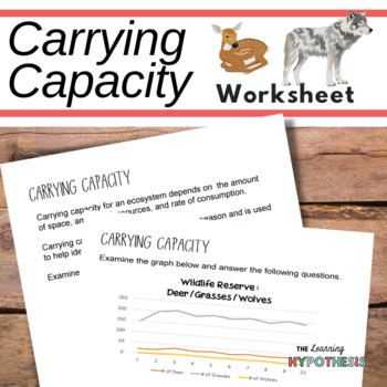 Capacity worksheets teaching resources teachers pay teachers ibookread Read Online