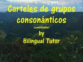 Spanish Blend Posters/Carteles de grupos consonánticos