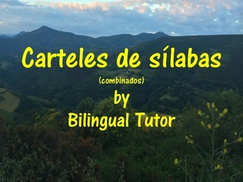 Spanish Syllable Posters/Carteles de sílabas (Combined)