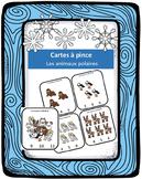 Cartes à pince - Animaux polaires