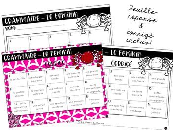 Cartes à tâches - 2e cycle - Grammaire - Le féminin