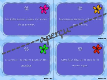Cartes à tâches - Remplacer un groupe de mots par un pronom