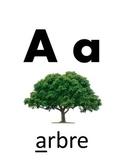 Cartes d'alphabet en Français - French Alphabet cards