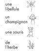 Cartes pour un mur de mots: Plantes et Animaux (20 cartes)